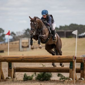 Talented young eventer / jumper