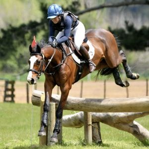 Talented young jumper / eventer