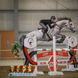 Horse for sale: Hugely Talented mare with potential to burn