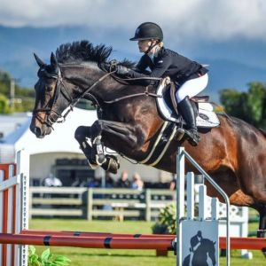 Horse for sale: CURRENT HOY YOUNG RIDER TITLE HOLDER