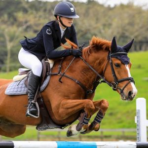 Exceptional Pony Grandprix Showjumper/All rounder