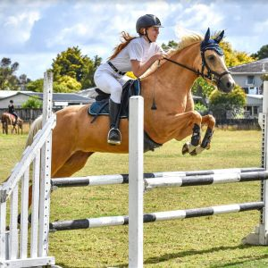 Scopey talented competitive young pony