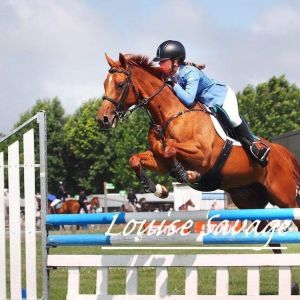 Horse for sale: 148cm (life cert) Serious Mini Prix contender.