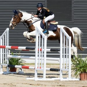 FUN COMPETITIVE ALL ROUND PONY