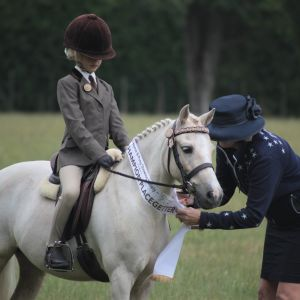 Fantastic Child's Pony with Bling!