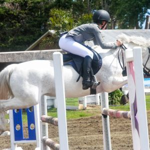 Experienced competitive jumping pony