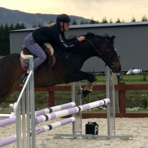 Full Height Pony