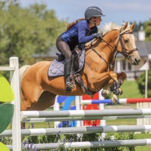 Horse for sale: Stunning pony with big potential!