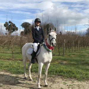 Brilliant second pony