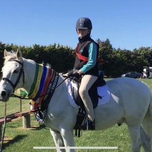 Schoolmaster Dressage Pony Club Pony