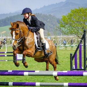 Horse for sale: Awesome Allrounder - Duntroon Ella