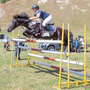 6YO Ultimate All rounder