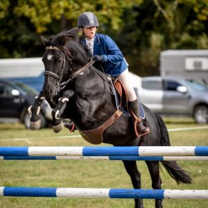 WANTED TO BUY - GENUINE SHOW JUMPING PONY