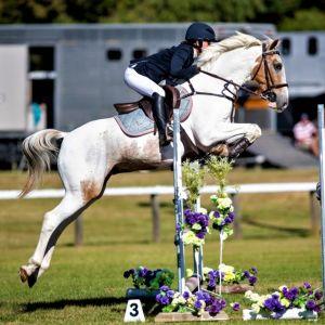 Fantastic Show Jumping Pony