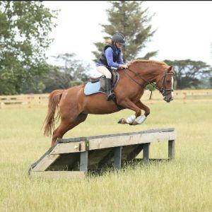 Fun 13.2 Pony