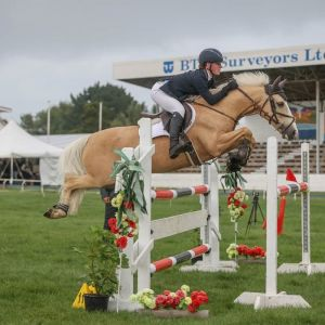 Horse for sale: Top Mini prix  / 1.20 pony with huge potential