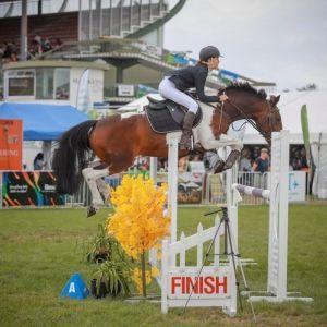 Horse for sale: MY RAINBOW RHYTHM / Ultimate All-Rounder Pony