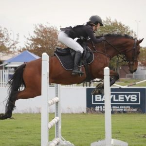 DESTELLAR / Exceptionally Talented All-Rounder Pony