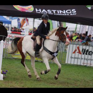 CHAMPIONSHIP 1.05m HOY Pony 2018