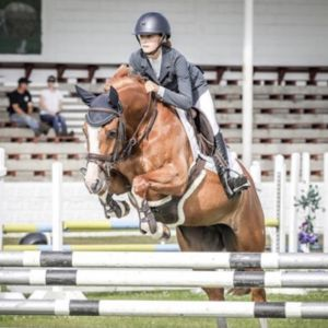 Horse for sale: Competitive Show Jumping Pony