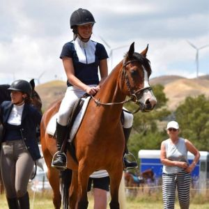 Horse for sale: Fun 13.2hh pony with personality plus!