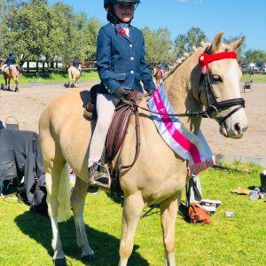 Super Dressage Pony