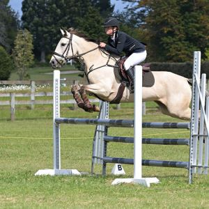 Talented Young Jumping Pony